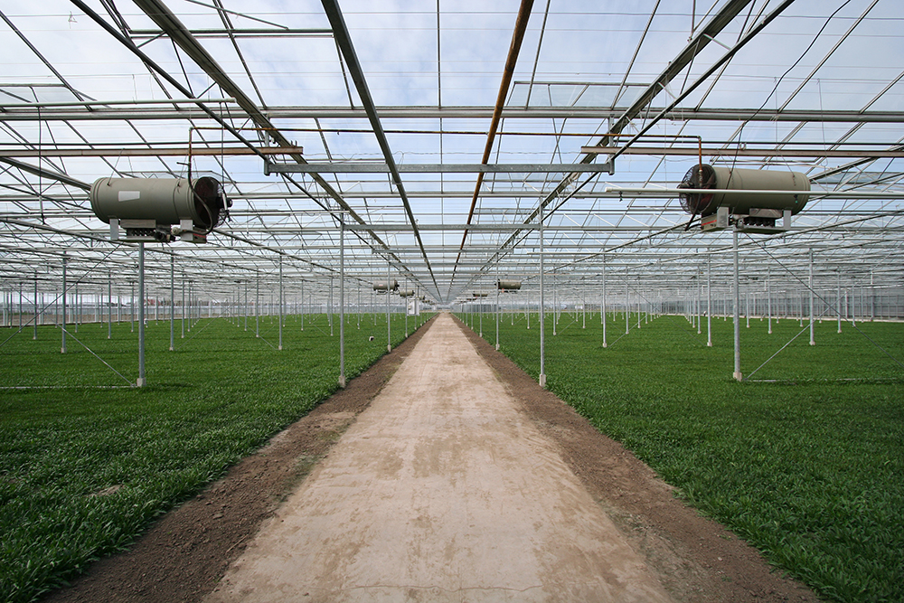 Reznor Greenhouse Solutions